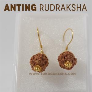 Anting Rudraksha