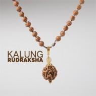 Kalung Rudraksha AK005