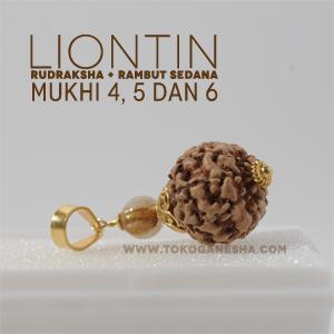 Liontin Rudraksha dengan 3 pilihan Mukhi (wjaha/ gurat) yaitu Rudraksha Mukhi 4, Mukhi 5 dan Mukhi 6 dihiasi Batu Permata Rambut Sedana Kecil dan dibalut perak berlapis emas.